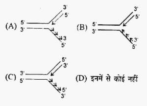 Uttarakhand LT Science Exam Paper